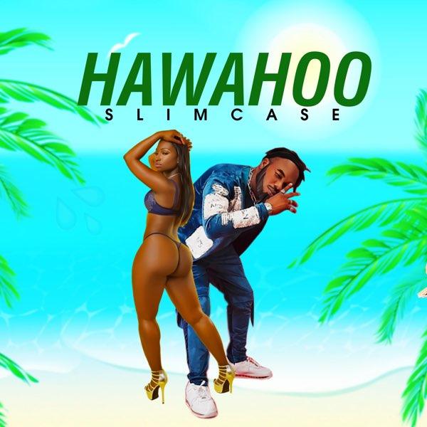 Slimcase-Hawahoo-artwork